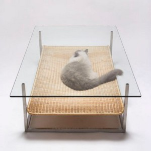 table_with_cat